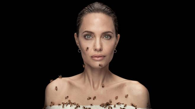 LOOK: Angelina Jolie gets covered in bees for 18 minutes in National Geographic photo shoot