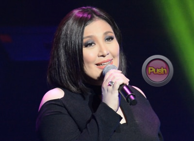 Sharon Cuneta gets emotional as she thanks supporters during concert