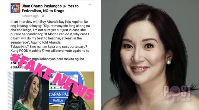 Kris Aquino lambasts netizen who spreads 'fake news' about her