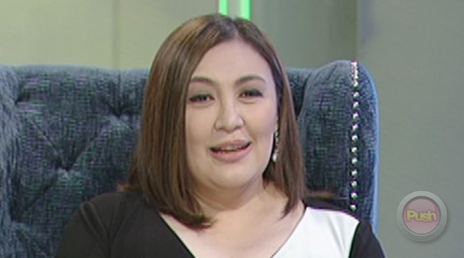 Sharon Cuneta: 'Kiko and I don't have a perfect marriage. Who does?'