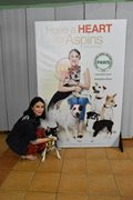 "Heart Evangelista graces the launch of ""A Heart for Aspins"" campaign with PAWS Philippines animal sh"