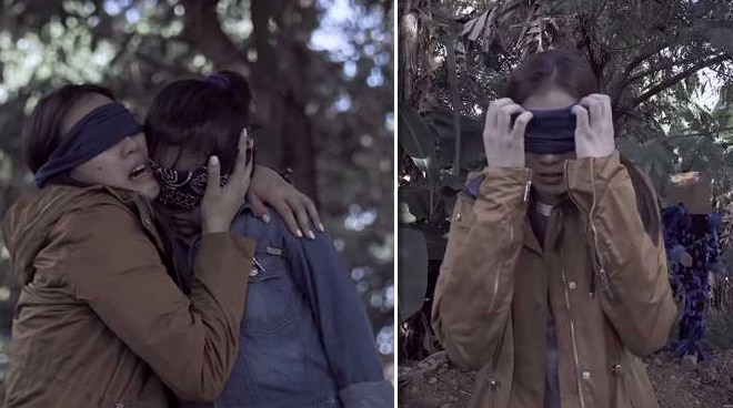 VIRAL: Alex Gonzaga creates 'Bird Box' parody 'BirdBaks'