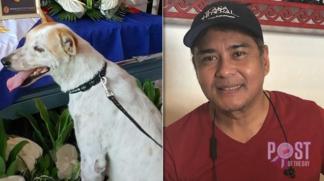 John Arcilla spearheads #BrakeForAnimals campaign after 'Pinoy Hachiko' dog dies
