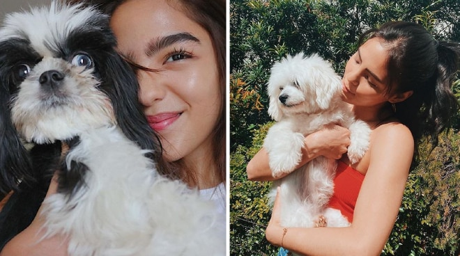 QT TIME: Celebrities bond with their pets at home