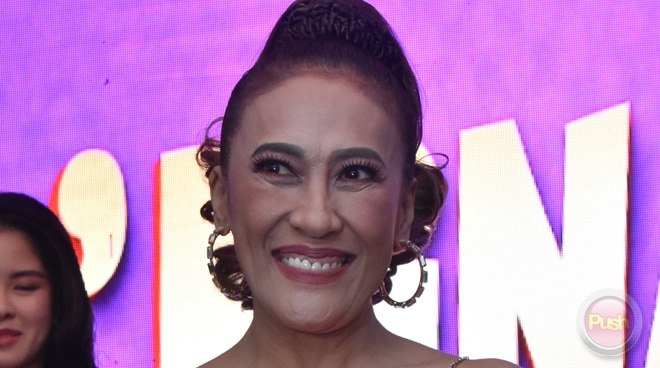 Ai-Ai Delas Alas reveals why she won't attend gay weddings