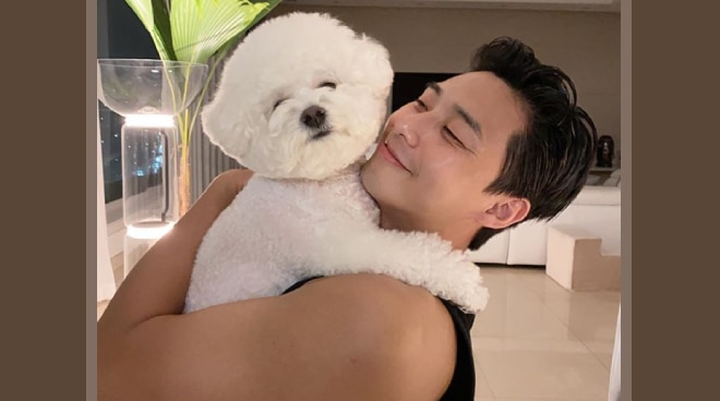 'Sana all aso': Fans, celebrities gush over Park Seo-joon's new photo with dog Simba